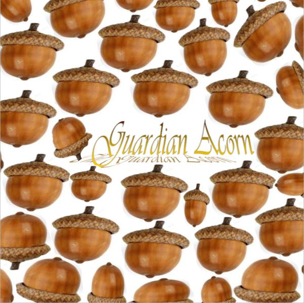 Guardian Acorn | Logo